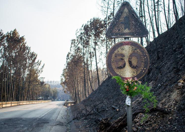 """""""Estrada da morte"""", que concentrou 47 das 64 vítimas do incêndio, recebe flores em homenagem aos mortos"""