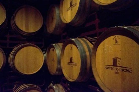 Processo de envelhecimento do vinho, com destaque para a influência da madeira, é um dos destaques do passeio | Foto: Giuliana Miranda/Folhapress